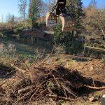 Pflegearbeiten Waldgrundstück